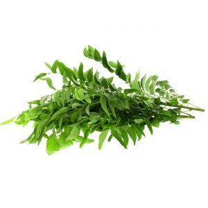 CURRY LEAVES INDIA 250GM APPROX WEIGHT